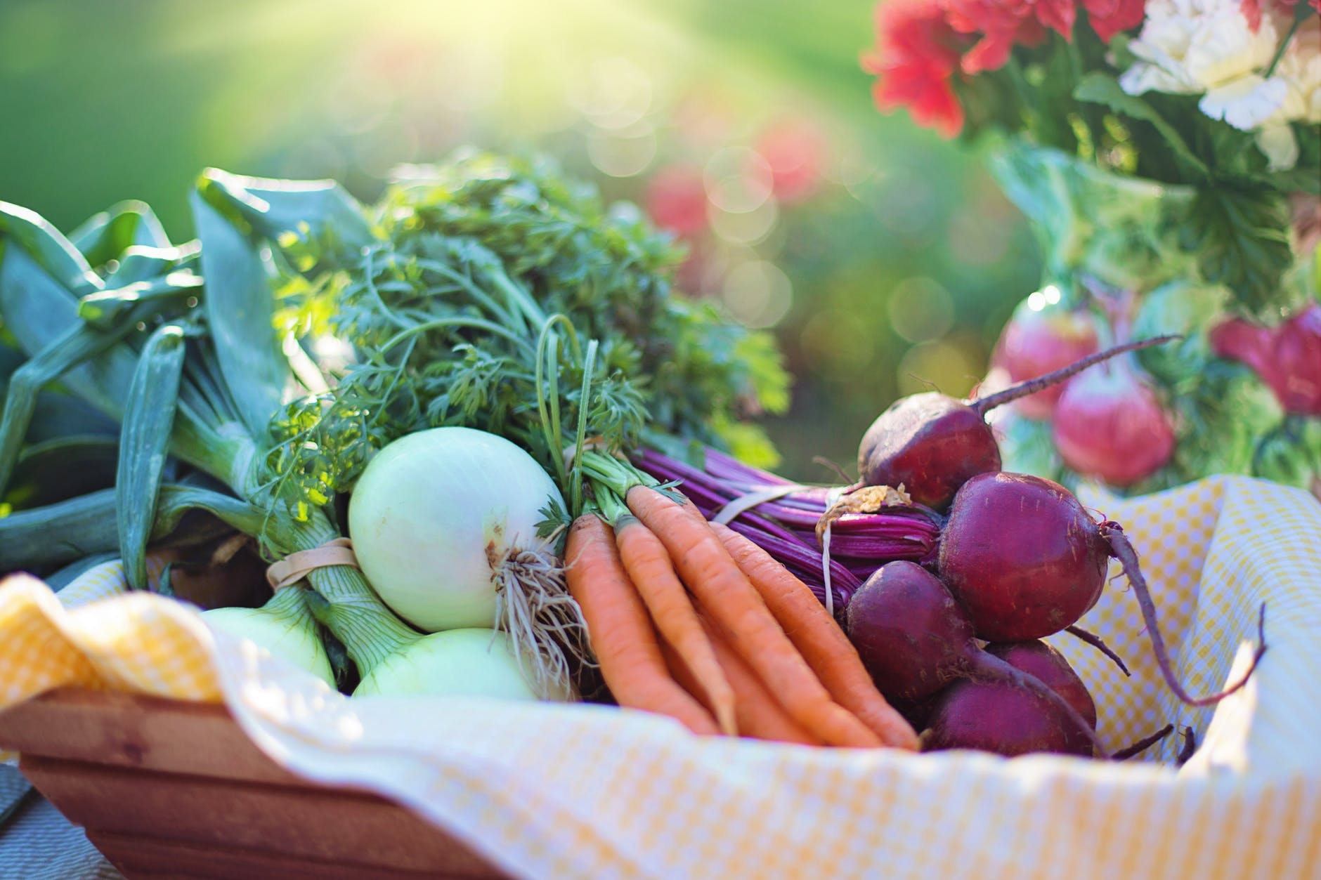 Food & Grocery Shipment